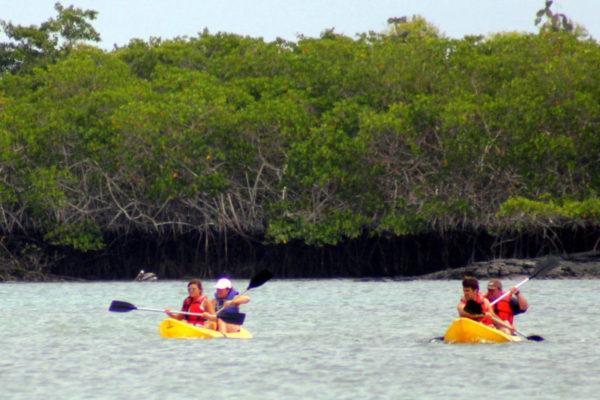 Huéspedes realizando kayakinn en las Islas Galápagos