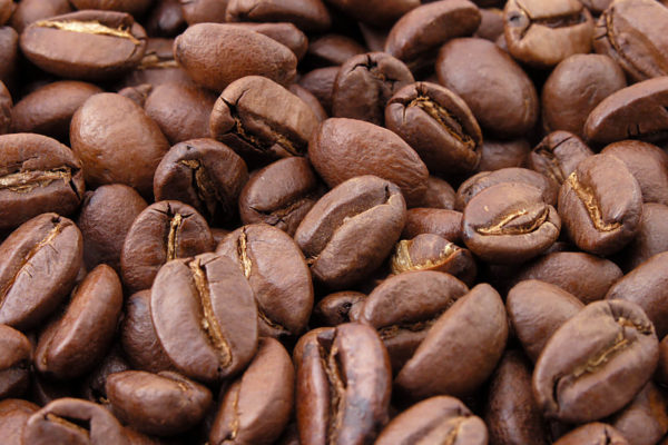 Coffee beans of the Galapagos Islands