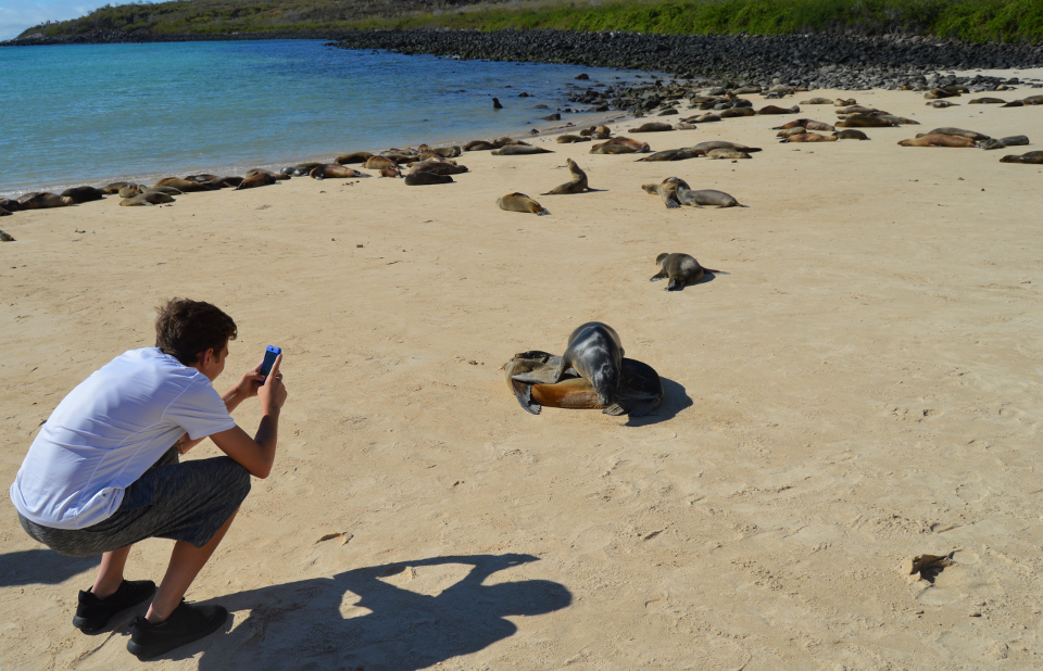 top reasons for why the galapagos are a kid's paradise