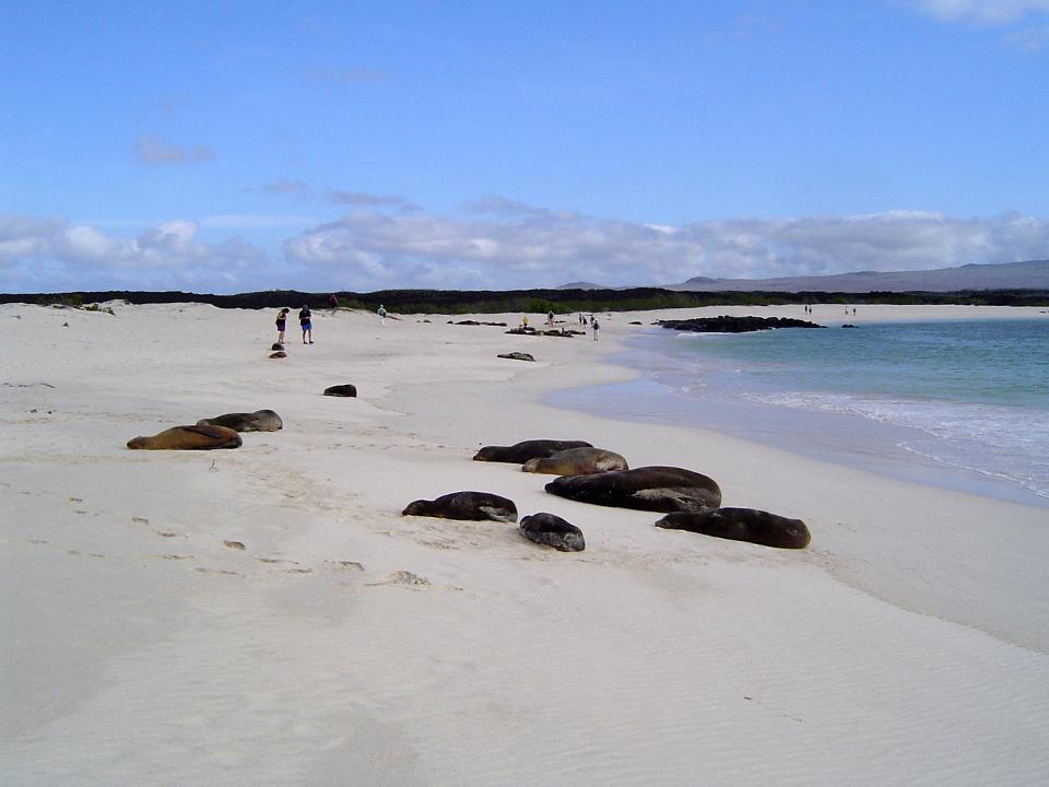 galapagos beaches
