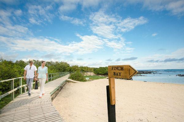 Finch Bay entrance
