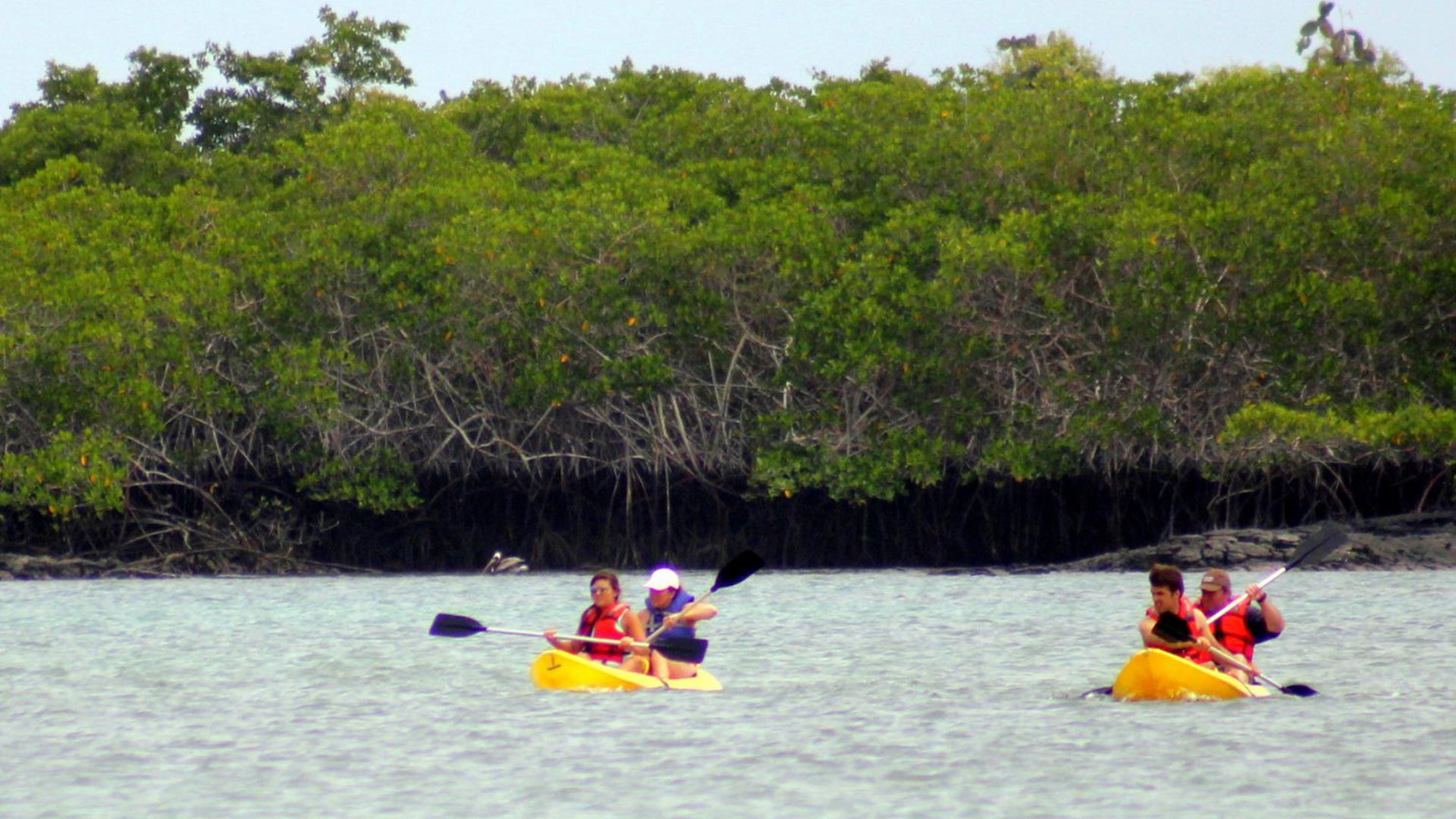 Kayaking in the Galapagos Islands