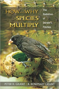 How and why species multiply