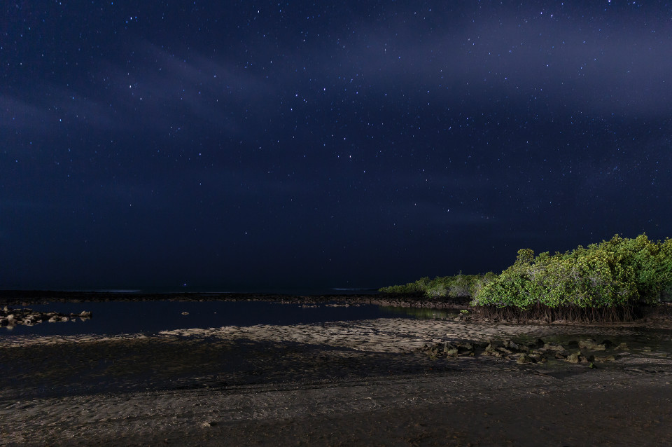 The night sky seen from Finch Bay