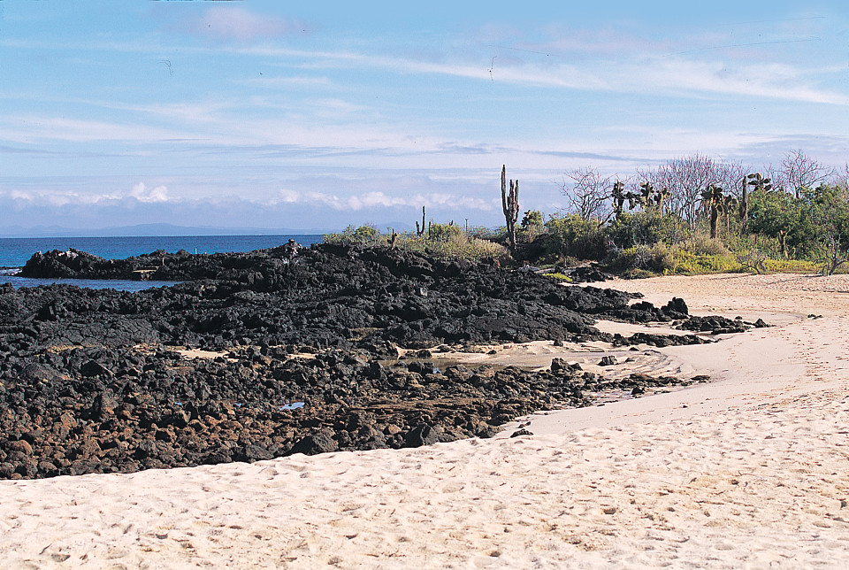 A beautiful Galapagos landscape