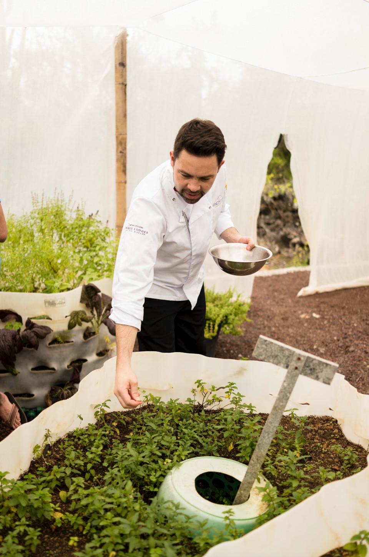 Finch Bay's organic garden