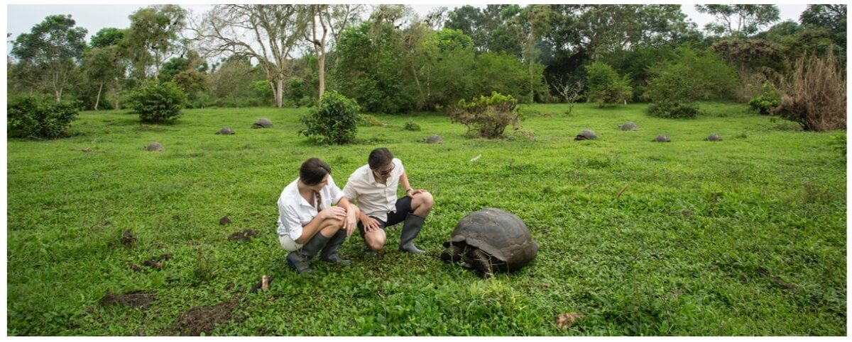 Guests encountering Galapagos Giant Tortoises at Manzanillo Ranch.