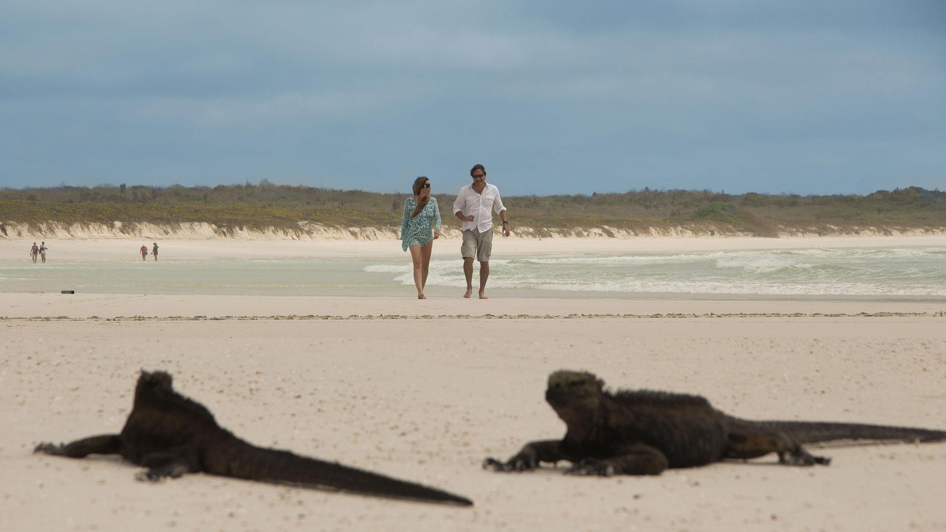 Tortuga Bay en Isla Santa Cruz - Galápagos