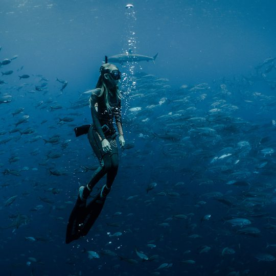 Experiences from Finch Bay Galapagos Hotel in Santa Cruz Island