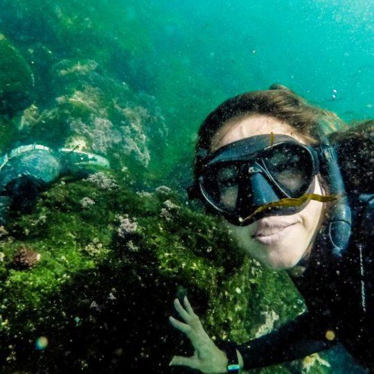 Buceo de superficie en Galapagos con Finch Bay Galapagos Hotel