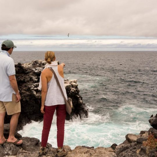 Galapagos blog