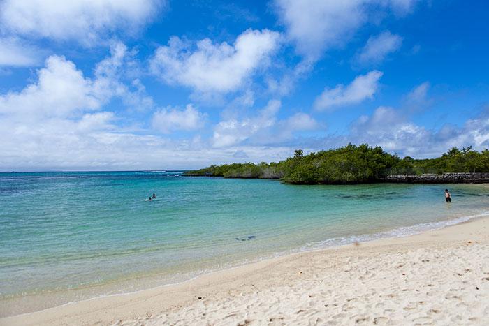 Playa de Los Alemanes en la Isla Santa Cruz
