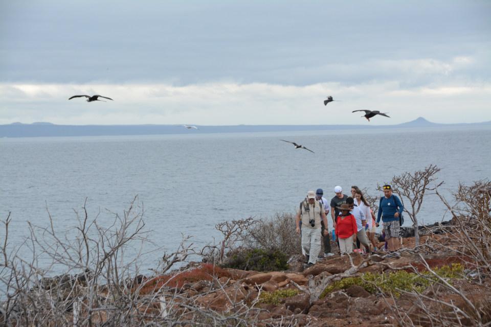 Caminata en la Isla Seymour Norte en las Islas Galápagos