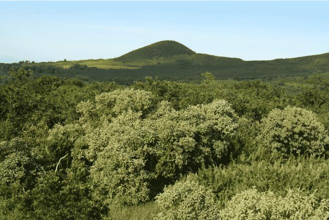 Tierras altas de la Isla Santa Cruz