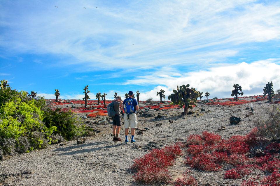 Senderos en Plaza Sur en las Islas Galápagos