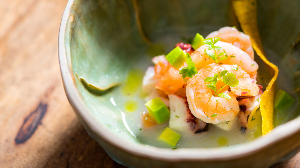 Finch Bay's gastronomy: Shrimp ceviche