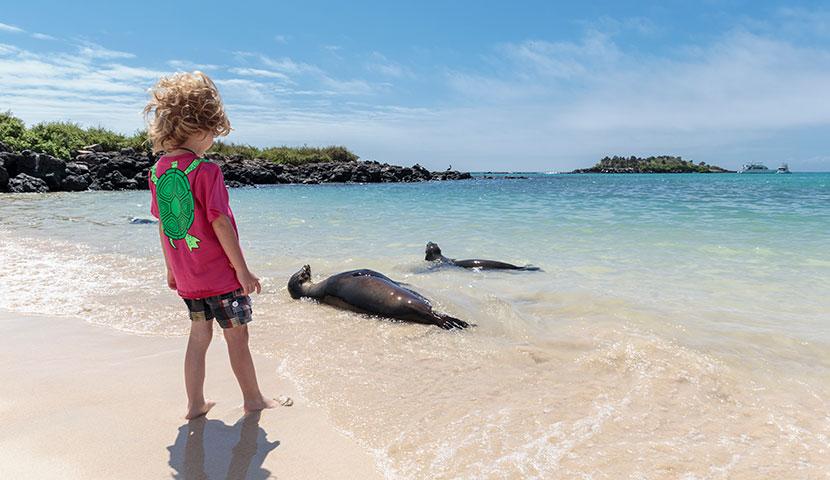 Niña admirando lobos marinos en la Playa de los Alemanes en Galápagos