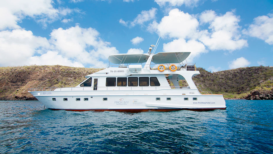 Day tours aboard Sea Lion Yacht