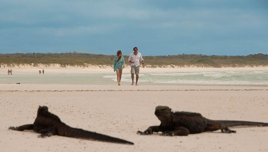 Caminando por la playa Tortuga Bay en las Islas Galápagos