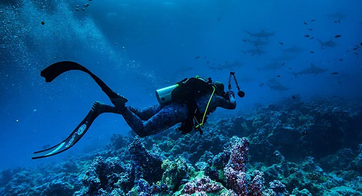 SCUBA Diving Program available at the Finch Bay Galapagos Hotel