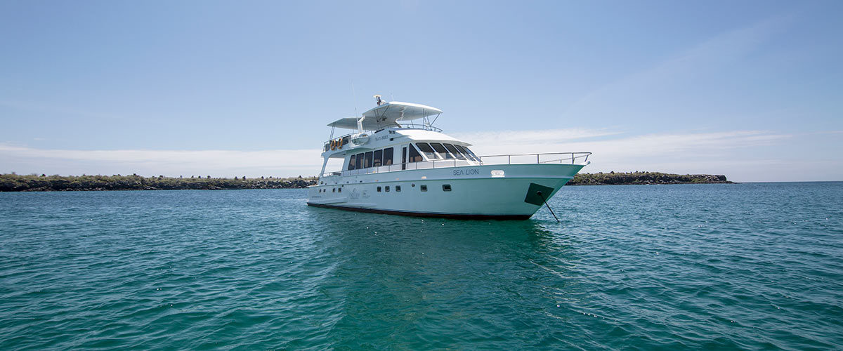 Yacht Sea Lion in the Galapagos Islands