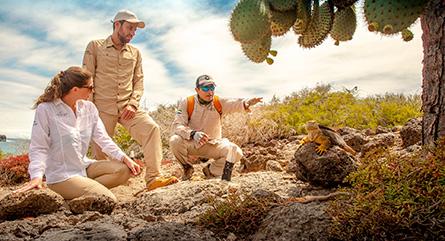 Paquete turístico de expedición en Galápagos del Finch Bay Galapagos Hotel