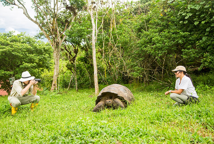 Giant tortoise expedition in the Galapagos Islands