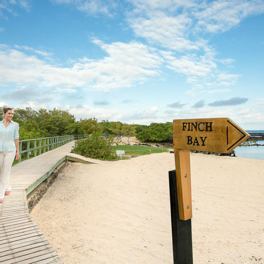 Finch Bay Spa entrance