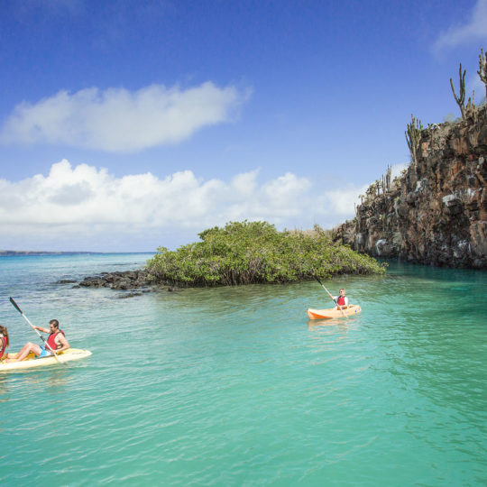 Kayak experience in the Finch Bay Galapagos Hotel