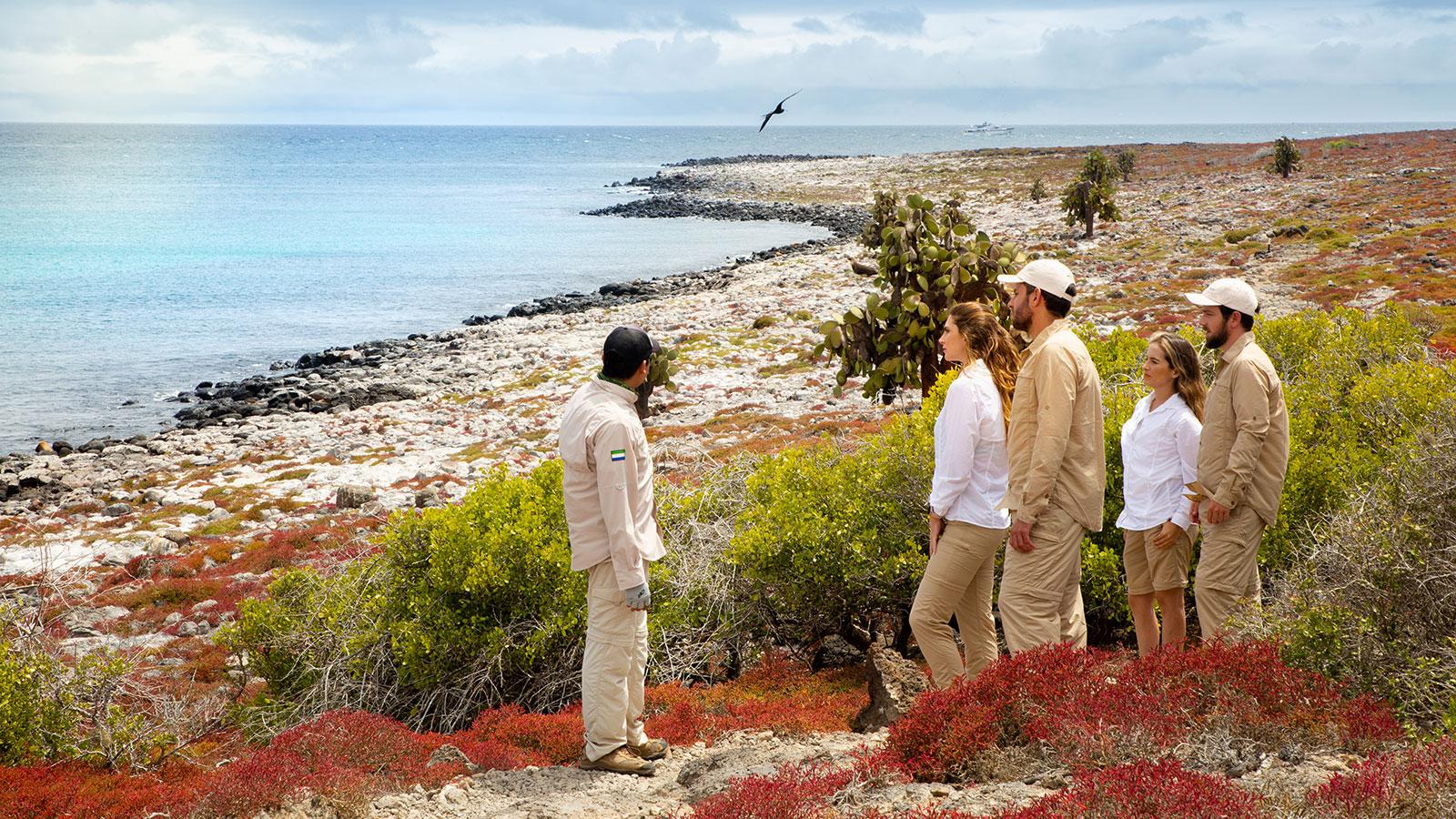 Excursiones privadas en la Isla Plaza Sur, un lugar donde hay innumerables aves marinas